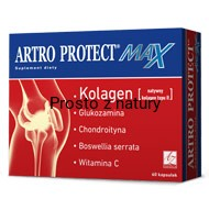 ARTRO PROTECT MAX 60kaps.suplement diety